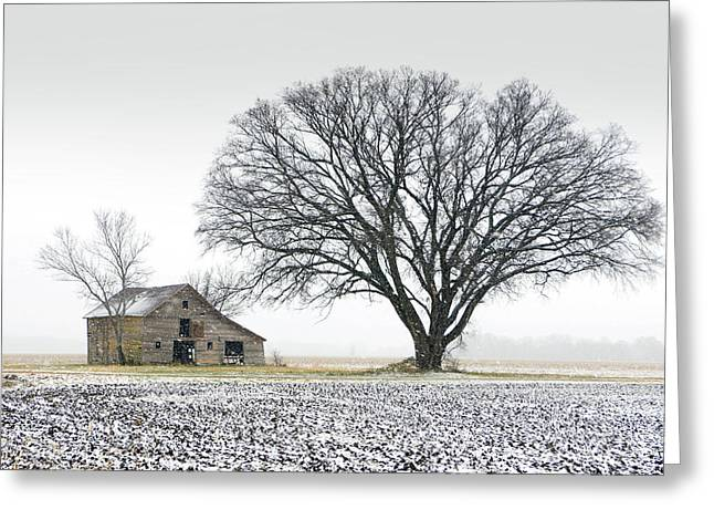 Winter's Approach Greeting Card