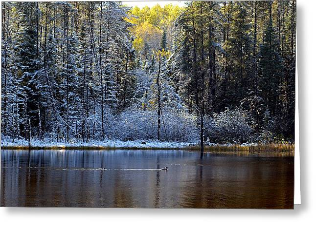 Greeting Card featuring the photograph First Snow by Doug Gibbons