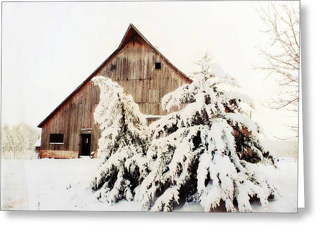 First Snowfall Greeting Card by Julie Hamilton