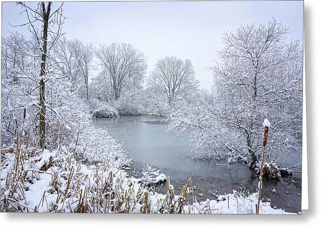 First Snow Greeting Card by Kathi Mirto