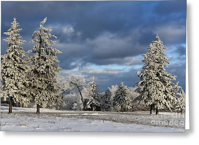 First Snow Of The Year Greeting Card