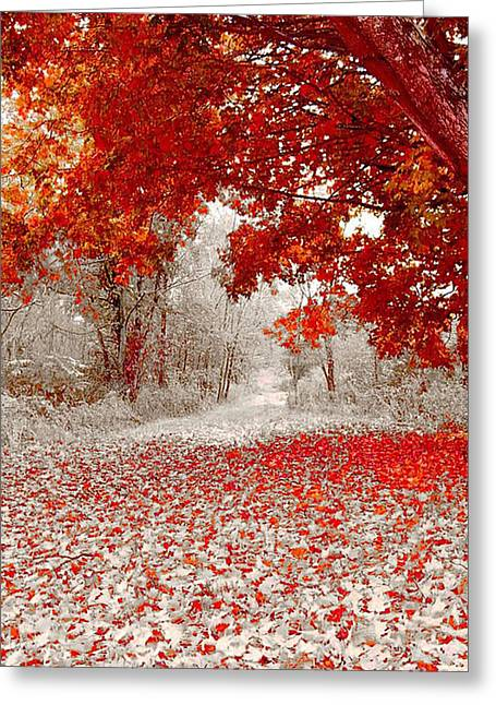 First Snowfall In Duluth Greeting Card by Helen Stapleton