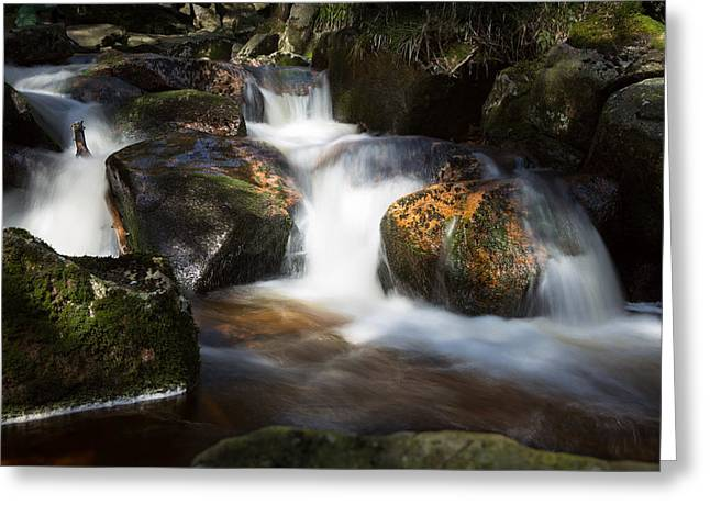 first spring sunlight on the Warme Bode, Harz Greeting Card