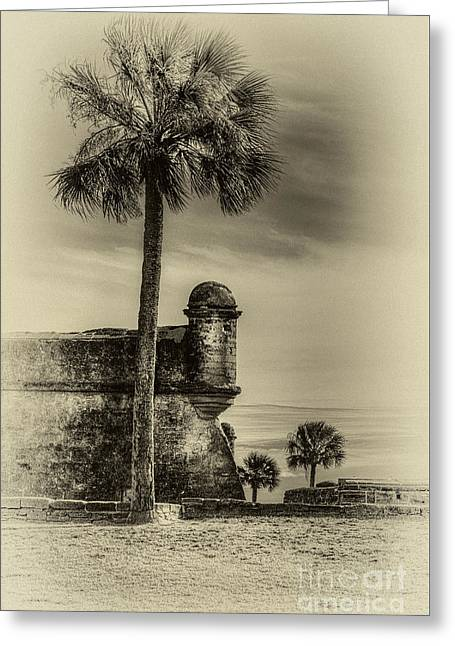 First Watch- Sepia Greeting Card by Marvin Spates