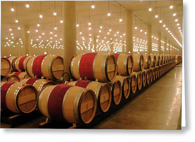 First Year Cellar At Chateau Latour Greeting Card by Rodger Lindquist