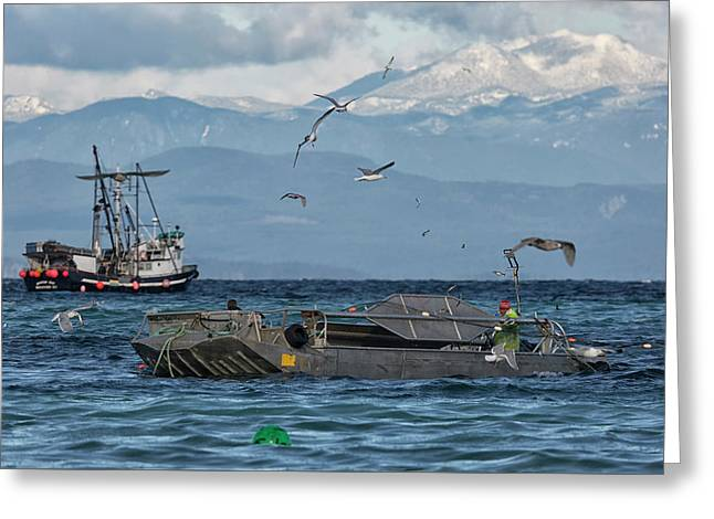 Greeting Card featuring the photograph Fish Are Flying by Randy Hall