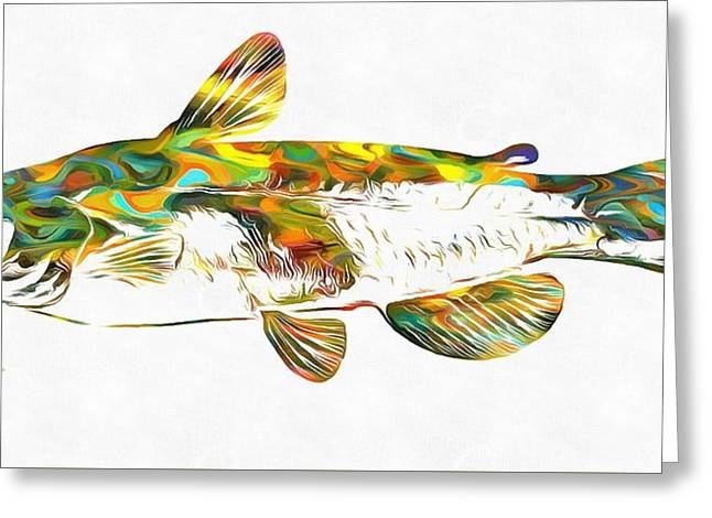 Fish Art Catfish Greeting Card by Dan Sproul