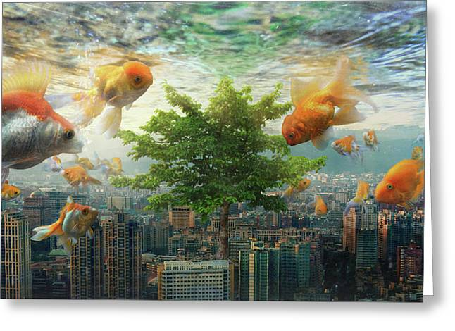 Fish Tank Greeting Card