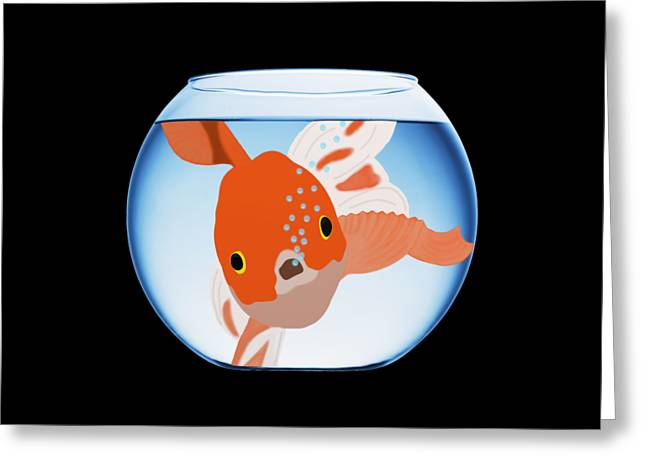 Fishbowl Greeting Card by Priscilla Wolfe