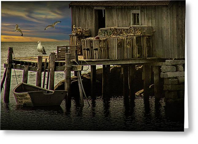 Fisherman's Wharf With Gulls At Peggy's Cove Greeting Card by Randall Nyhof