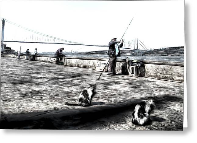 Fishermen And Cats Istanbul Art Greeting Card