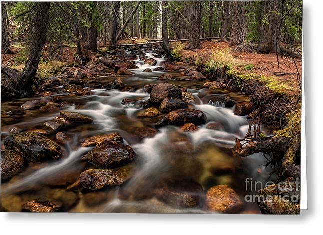 Fishhook Creek Waterscape Art By Kaylyn Franks Greeting Card