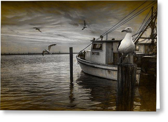 Fishing Boat And Gulls With Painterly Effects Greeting Card