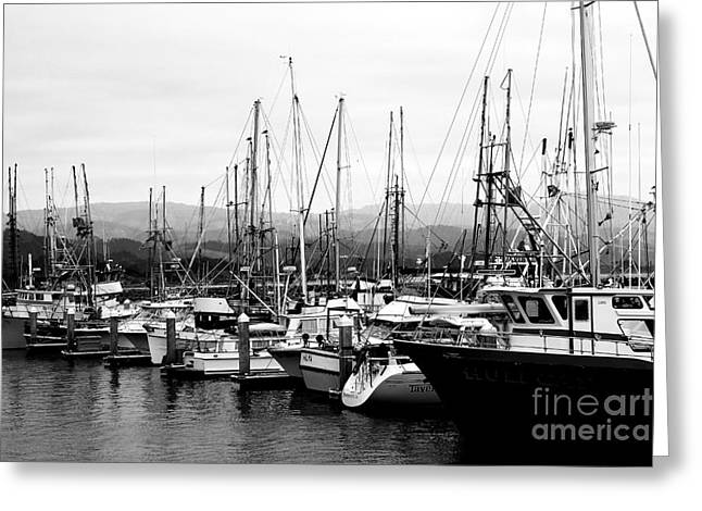 Half Moon Bay Greeting Cards - Fishing Boats . 7D8208 Greeting Card by Wingsdomain Art and Photography
