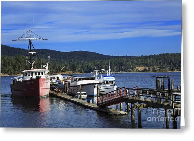 Fishing Boats In Sooke Greeting Card by Louise Heusinkveld