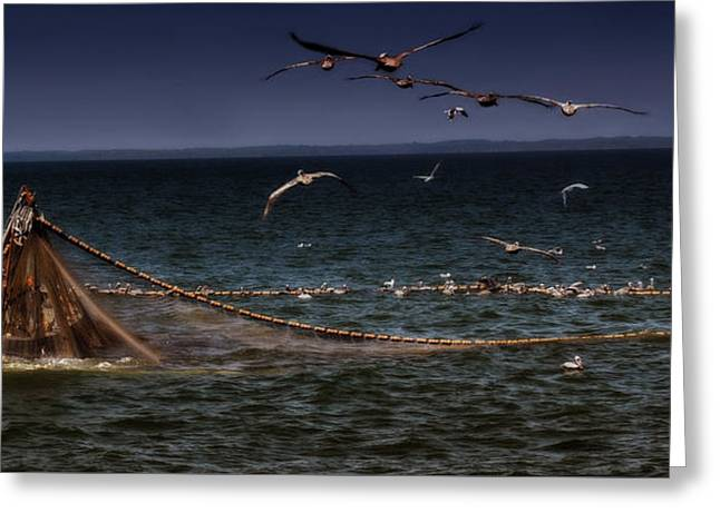 Fishing For Menhaden On The Chesapeake Bay Greeting Card by Glenn Gemmell