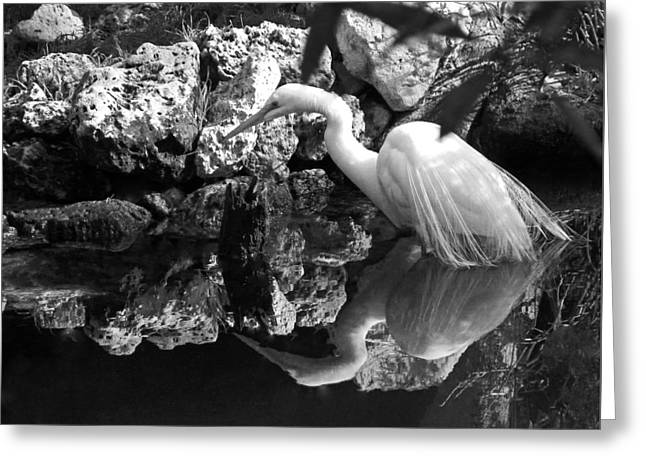 Fishing In The Creek In Black And White Greeting Card