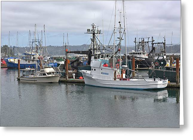 Fishing Vessels Moored In Newport Oregon. Greeting Card by Gino Rigucci