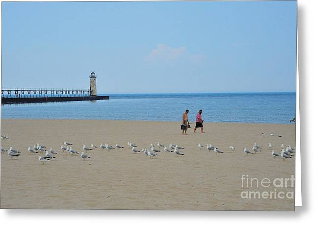 Fishing With The Seagulls At The Manistee Lighthouse Greeting Card by Terri Gostola