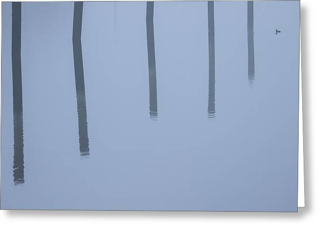 Greeting Card featuring the photograph Five Poles And A Duck by Karol Livote