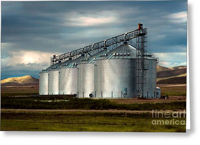 Five Silos On The Plains Of The Texas Panhandle Greeting Card by MaryJane Armstrong