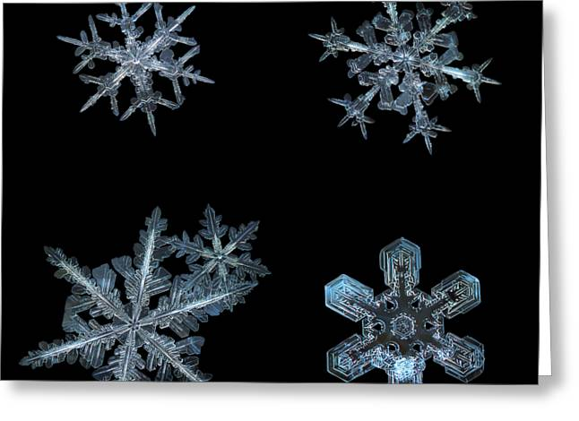 Five Snowflakes On Black 3 Greeting Card