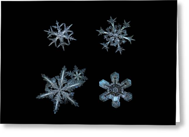 Five Snowflakes On Black 3 Greeting Card