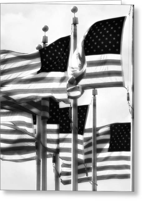 Flags Greeting Card by John Gusky