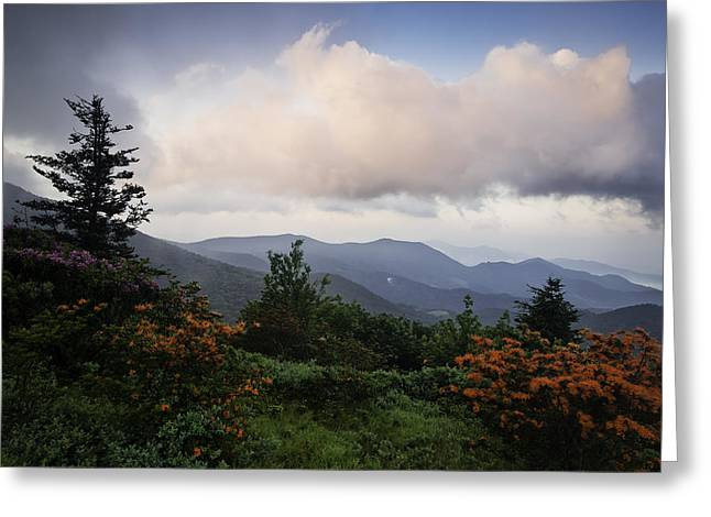 Mountain Photographs Greeting Cards - Flame and Flowers Greeting Card by Rob Travis