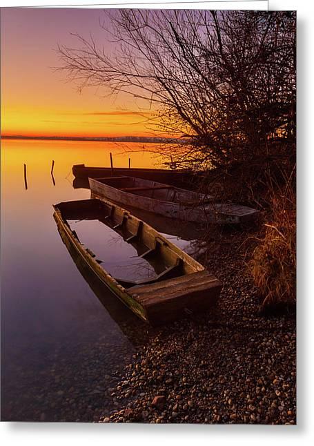 Flame Of Dawn Greeting Card