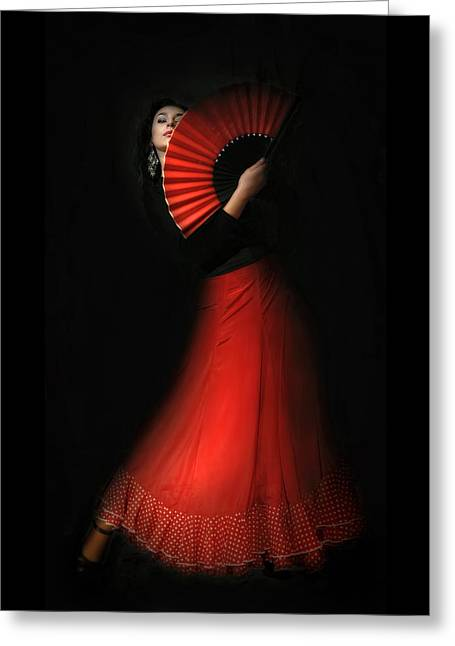 Flamenco Greeting Card by Viktor Korostynski