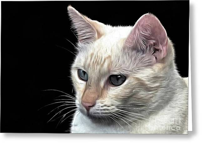 Flamepoint Siamese Greeting Card