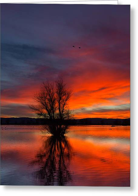 Flames On The Water Greeting Card