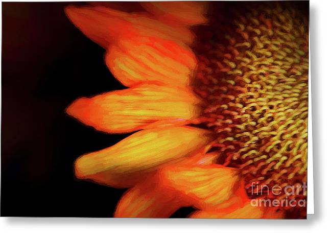 Flaming Sunflower Greeting Card