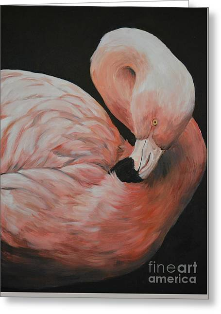 Flamingo Greeting Card by Charlotte Yealey
