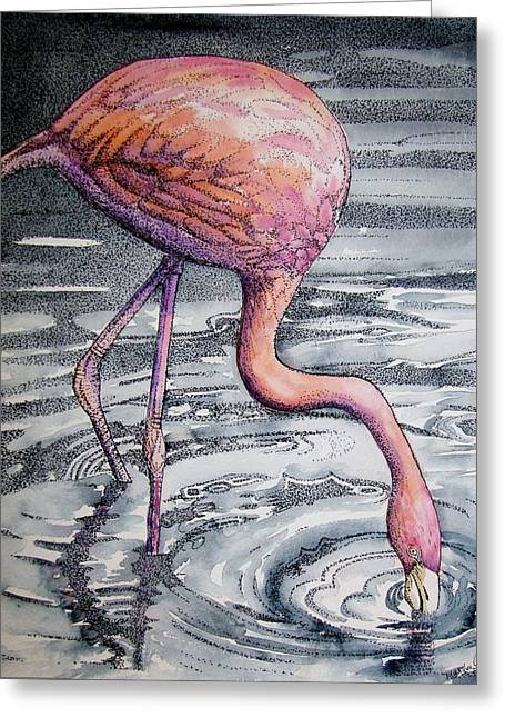 Flamingo Fishing  II Greeting Card