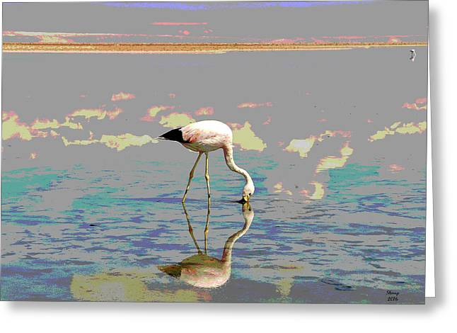 Flamingo In The Sunset Greeting Card by Charles Shoup