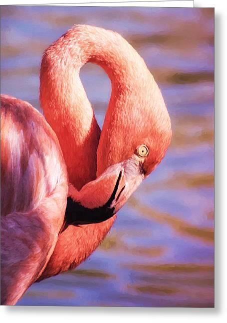 Flamingo Portrait Painting Greeting Card