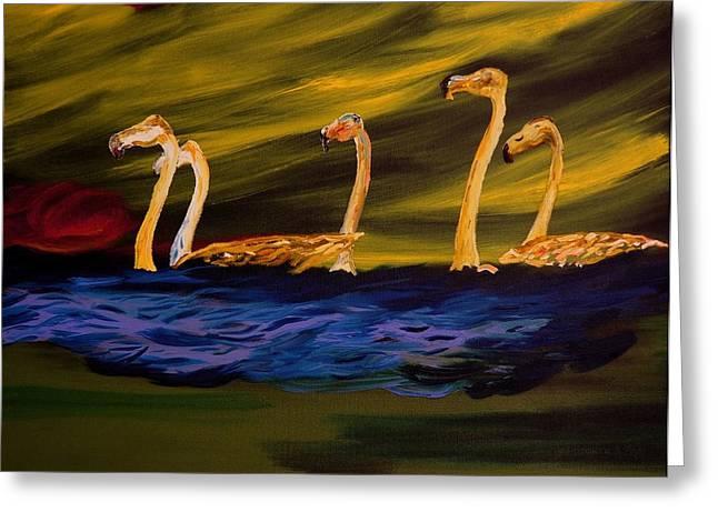 Flamingoes Swim African Birds Greeting Card