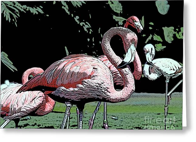 Greeting Card featuring the photograph Flamingos I by Jim and Emily Bush
