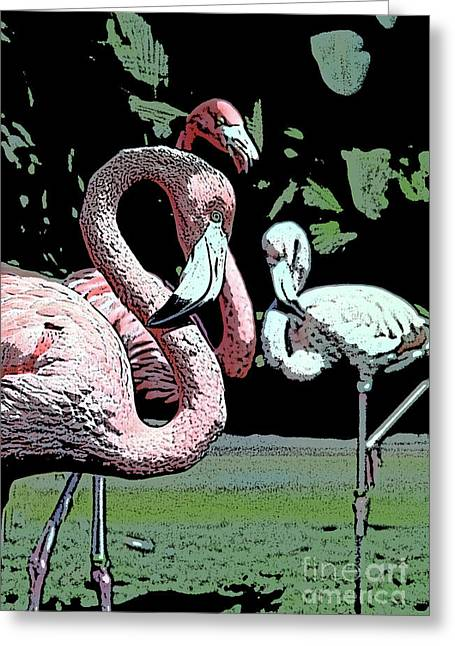 Greeting Card featuring the photograph Flamingos II by Jim and Emily Bush