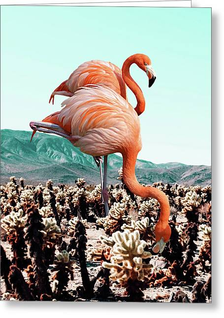 Flamingos In The Desert Greeting Card by Uma Gokhale