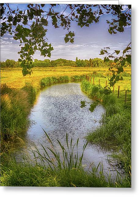 Flemish Creek Greeting Card by Wim Lanclus