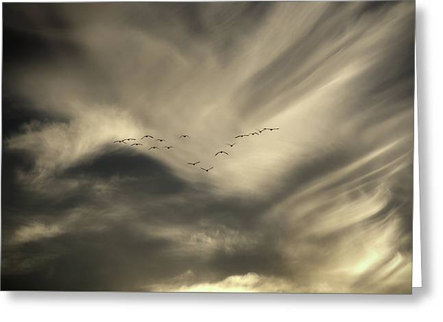 Greeting Card featuring the photograph Flight 016 Westbound by Robert Geary