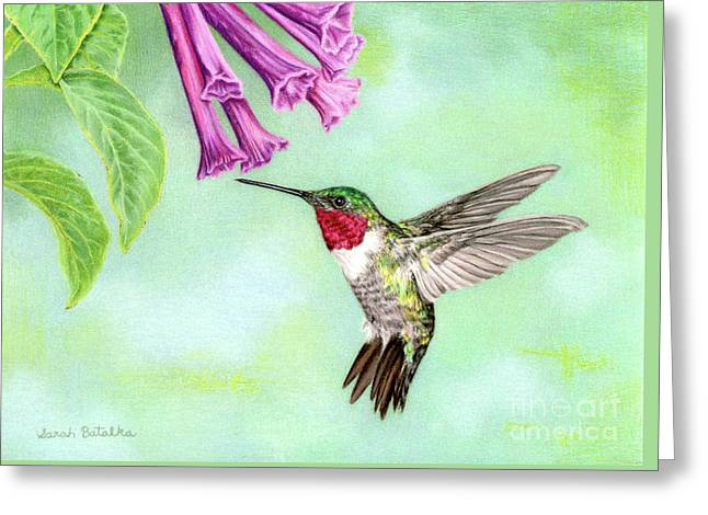 Flight Of Fancy Greeting Card by Sarah Batalka