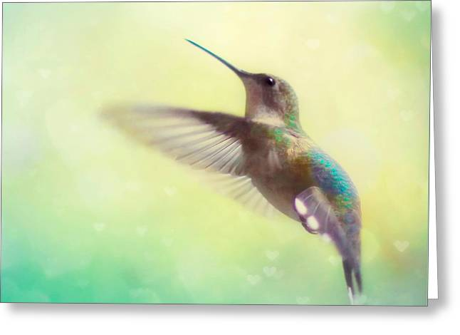 Flight Of Fancy - Square Version Greeting Card by Amy Tyler