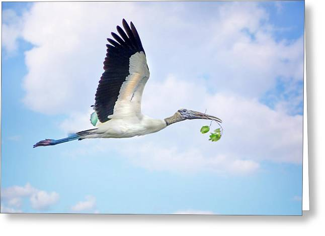 Flight Of The Wood Stork Greeting Card