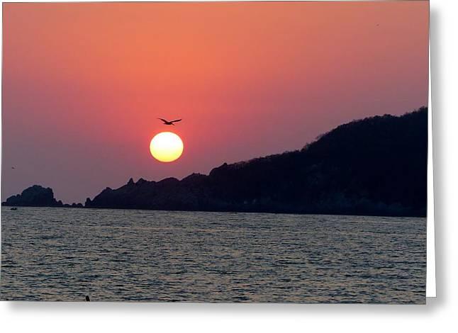 Flight Over The Sun Greeting Card