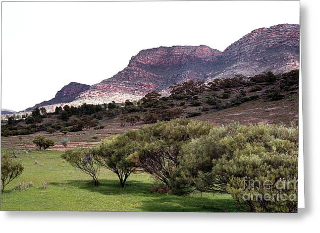 Flinders Ranges 02 Greeting Card by Rick Piper Photography