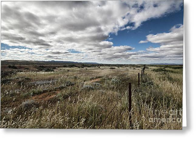 Greeting Card featuring the photograph Flinders Ranges Fields V2 by Douglas Barnard